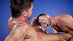 Members Exclusive : Dominic Pacifico, Rich Kelly