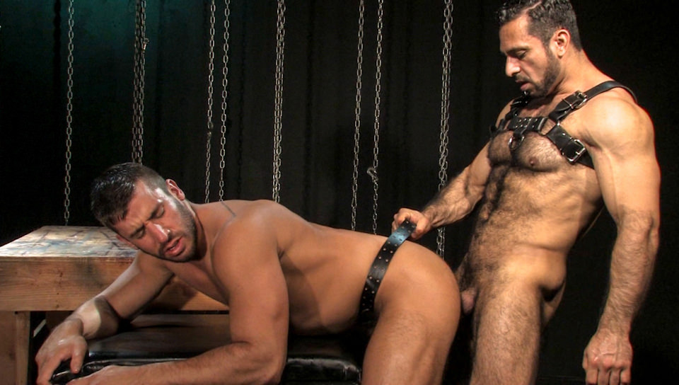 Muscled Bear Adam Champ As Alpha Of Butt Fuck