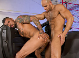 Auto Erotic, Part 2 : Boomer Banks, Sean Zevran