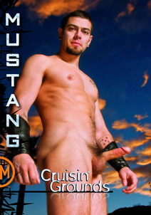 Cruisin' Grounds DVD Cover