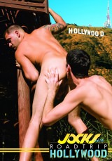 Road Trip, Vol. 14 - Hollywood Dvd Cover