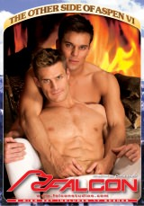 The Other Side Of Aspen VI DVD Cover