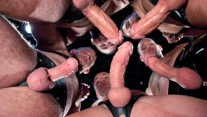 Pack Attack 5: Shane Frost, Scene #01